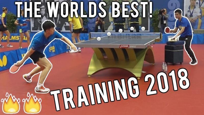 Ma Long Fan Zhendong Training 2018 | Relentless