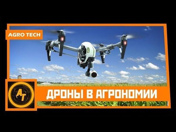Квадрокоптеры в сельском хозяйстве Дроны решат проблемы фермеров AgroTech