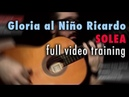 Gloria al Niño Ricardo (Solea) by Paco de Lucia - Full Training - See Description