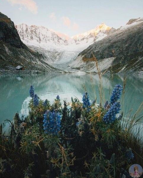 Красотка природы