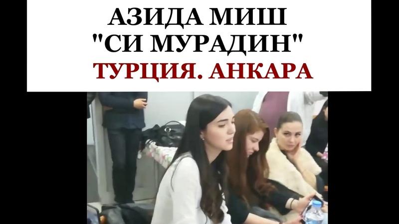 АЗИДА МИШ СИ МУРАДИН АНКАРА ТУРЦИЯ 2018