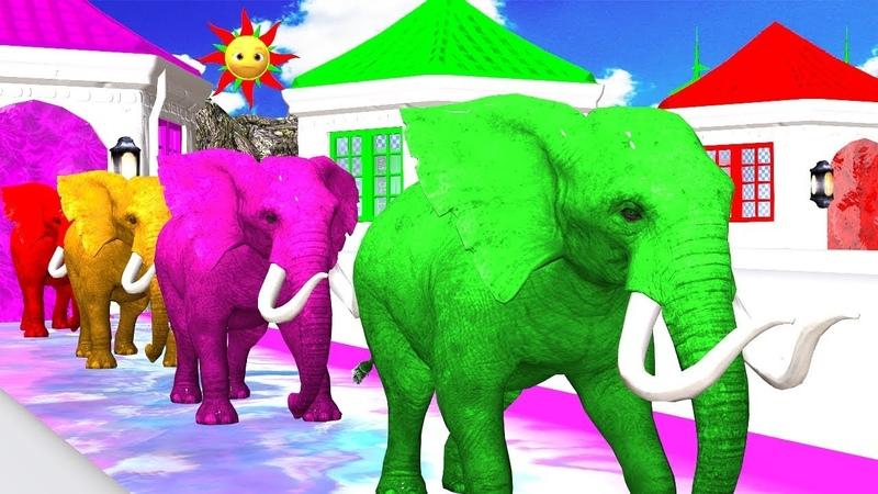 Los animales de granja y sus crías se transforman en animales salvajes en la fuente Episodio 17
