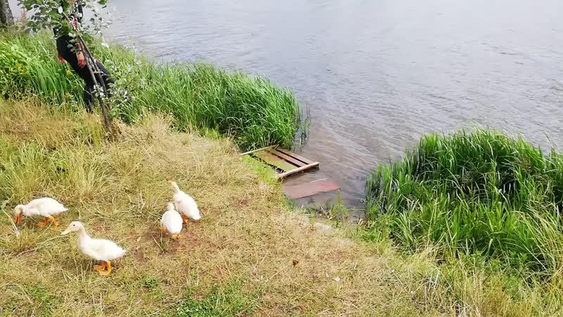 Булатниковский пруд