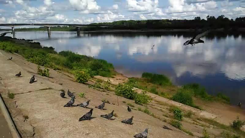 Александровский сад.Вятка река.
