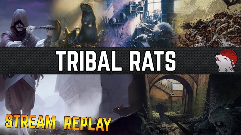 🐀 [Modern] Tribal Rats! ⚫️ Pack Rats and Swarmyard to the Piper of the Rats! AHH A LURRUS CAT!
