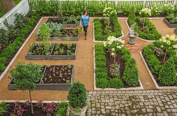 10 коротких ответа на вопросы про урожайность огорода: