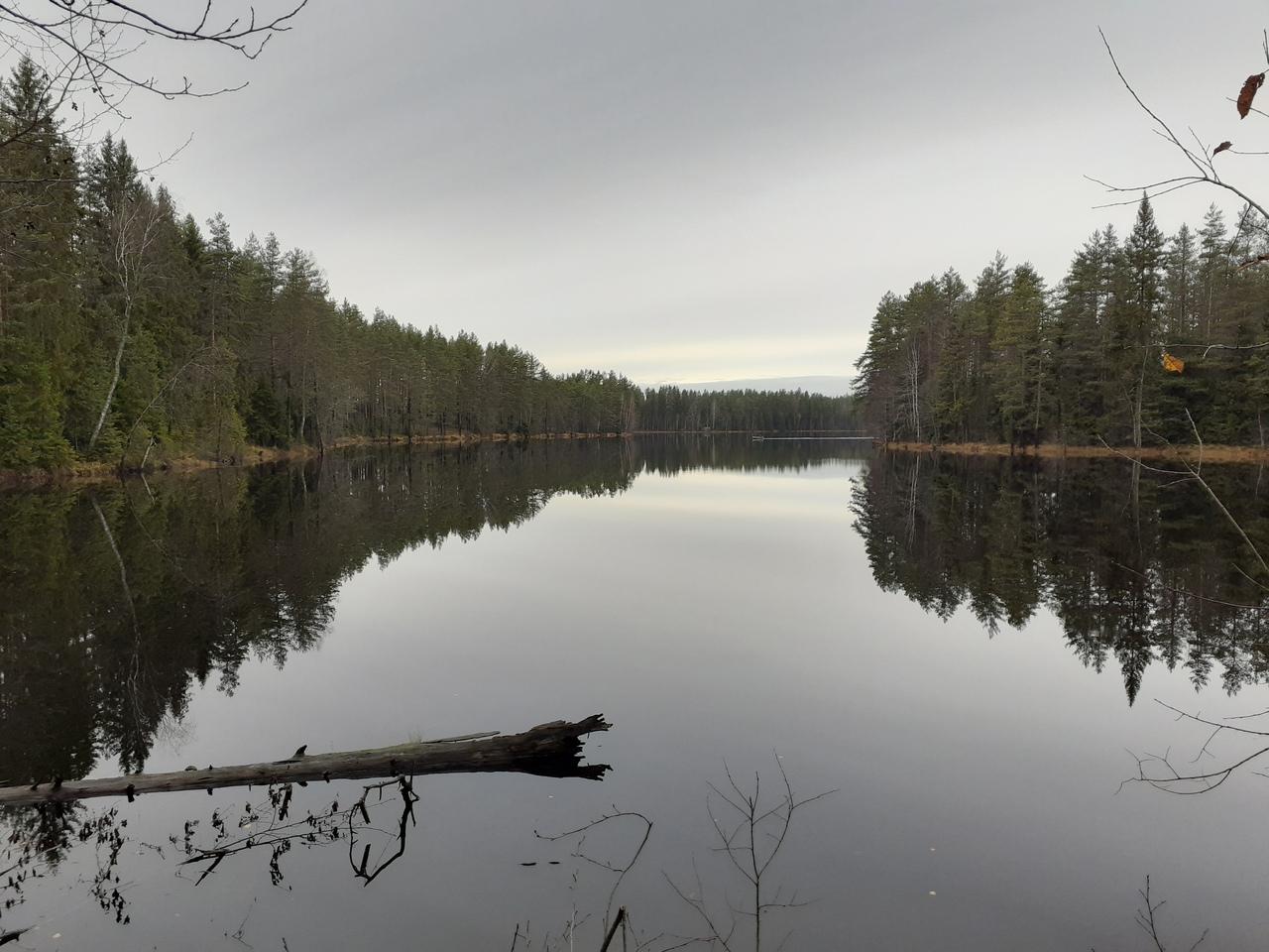 Поход по Карельскому перешейку. Красивые лесные озера возле поселка Рощино