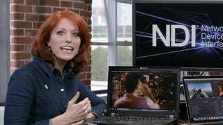 After Effects and Premiere Live Video Output with NewTek NDI for Adobe CC