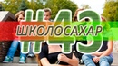 ШКОЛОСАХАР 43 CS 1.6