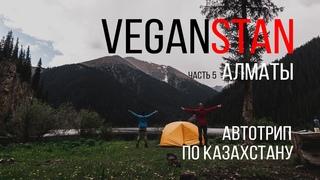 АЛМАТЫ. В ПОИСКАХ ТОФУ || veganstan часть 5 || путешествие по Казахстану
