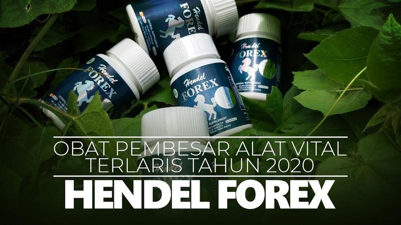 Hendel Forex Obat Pembesar Alat Vital 2020