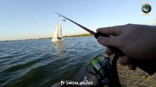 Ловля окуня и судачка на яхт-клубе. Рыбалка в Калининграде.