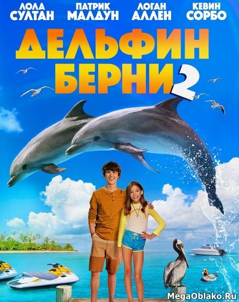 Дельфин Берни2 / Bernie the Dolphin2 (2019/WEB-DL/WEB-DLRip)