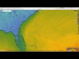 Рекорды тепла в России и замерзающая Флорида. Суровые итоги шторма Глория в Испании.