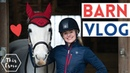 Barn Vlog A chilled day with the Ponies AD This Esme