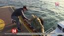В Чёрном море прошли тактико-специальные учения «Лагуна-2019»