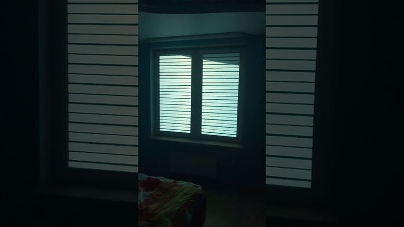 Рулонные шторы Зебра День ночь Уни 2 с тканью Стандарт голубой