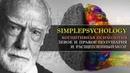 Когнитивная психология 18. Левое и правое полушария и расщепленный мозг.