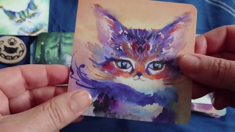 Spirit Cats Oracle deck, tout mimi mais pas seulement ❤️🐱 (review, video)