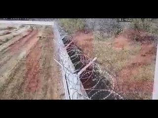 Пьяные солдаты на бмп снесли забор в Волгограде.