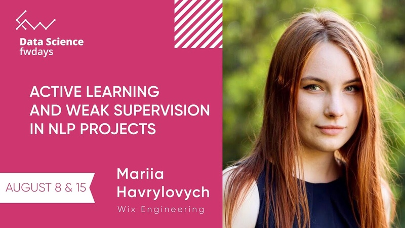 Active learning and weak supervision in NLP projects Mariia Havrylovych