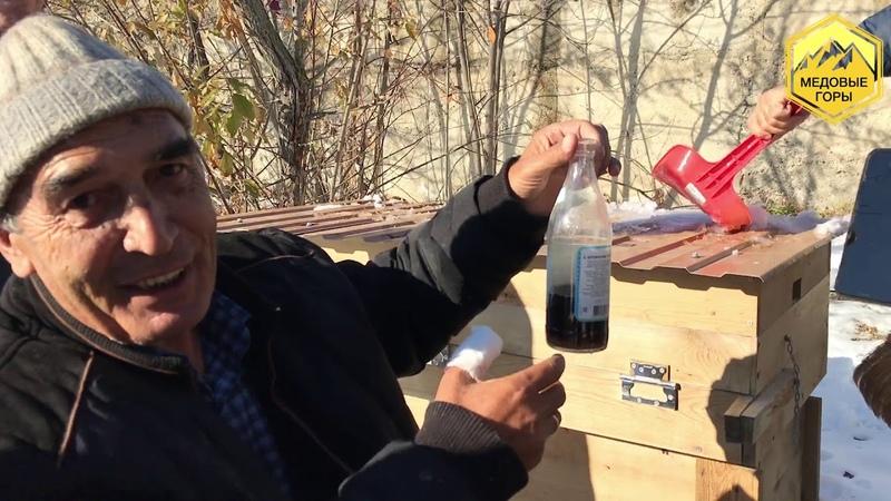 Джетул Байрамкулов Технология пчеловождения для людей с ограниченными возможностями