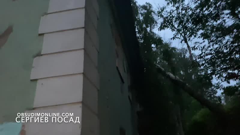 На жилой дом рухнуло огромное дерево в результате ДТП