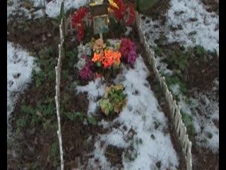Под Курском нашли незаконное кладбище домашних животных