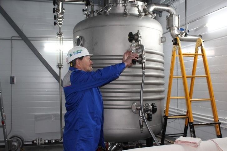 28 новых российских производств в ноябре, изображение №9