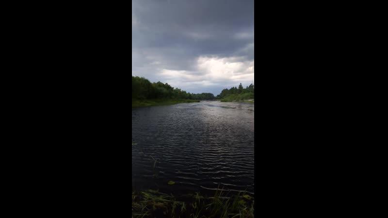 Лух перед дождём