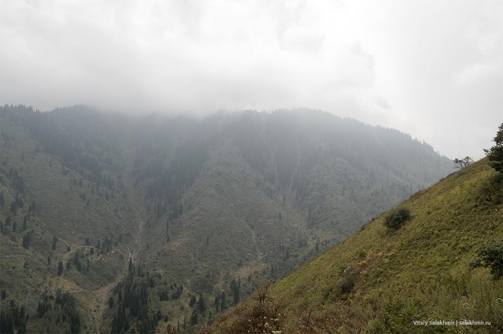 Облака в горах Алматы, Кок-Жайляу 2019