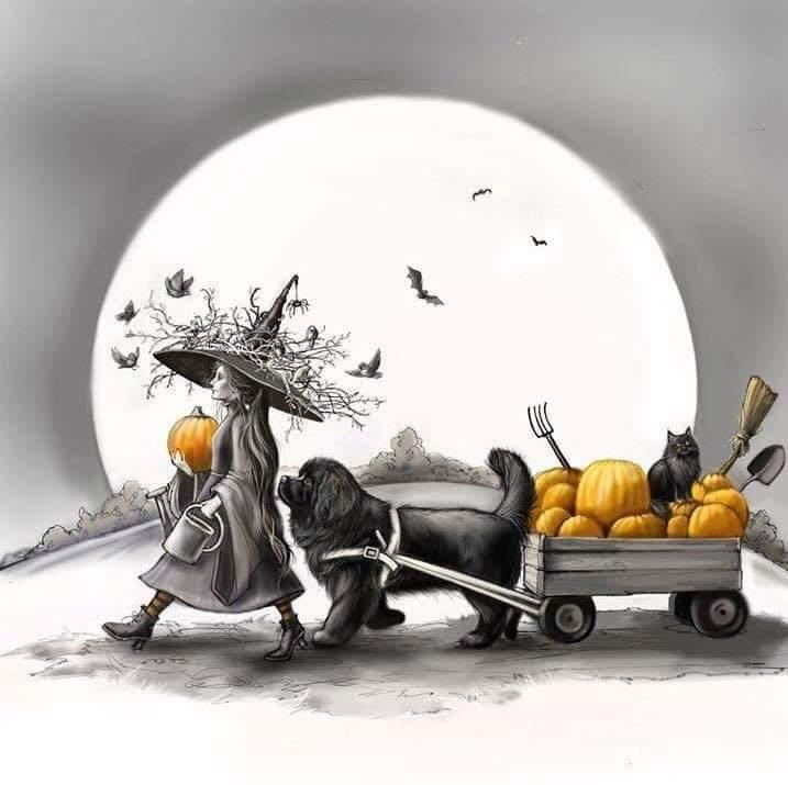 Афиша Самара Хэллоуин с собаками
