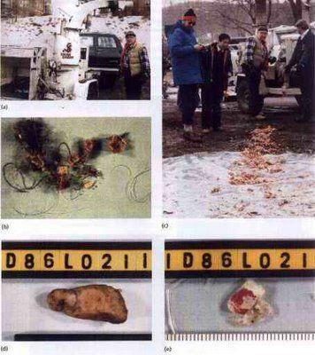 «Фарго»: реальная история. часть 2 Детективы решили не останавливаться и продолжили допросы Ричарда. Очередной состоялся 11 декабря 1986 года. В тот вечер следователи пришли прямо в полицейский