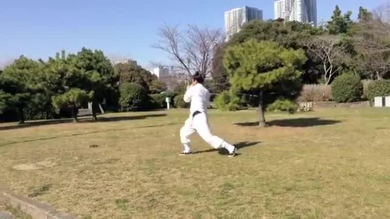 Wudang Gongfu Jiu Jie Bian 武当功夫 九节鞭 宋相辉师父 Master Song Xianghui YouTube 360p