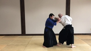 Aikido Second Hand Techniques