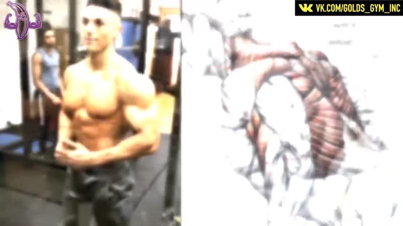 12 упражнений для увеличения спины