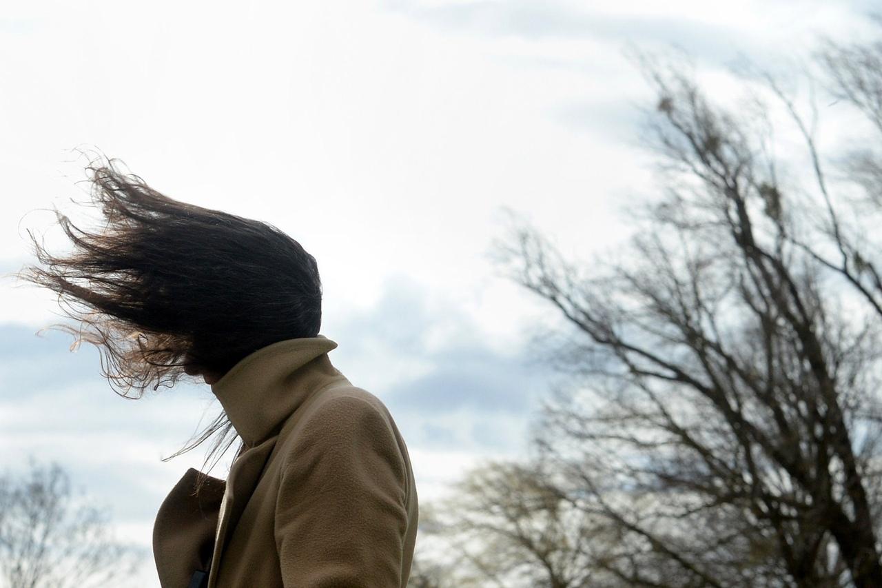 МКУ «Управление защиты от ЧС» Таганрога предупреждает о сильном ветре и морозах на выходных