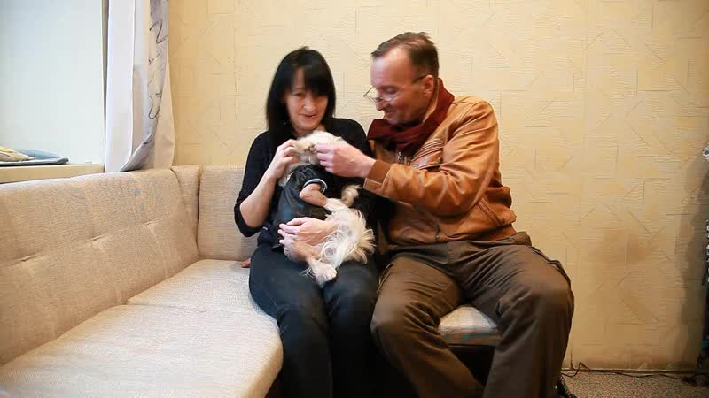 Интерьвью Светлана Румм  креативный директор TFP одежда для собак