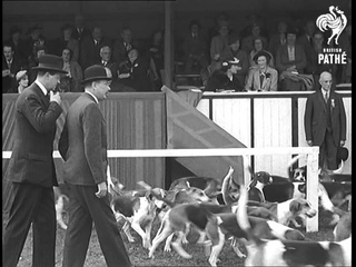 Duke Of Gloucester At Agricultural Show (1939)