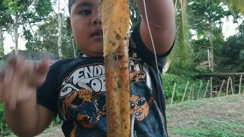 Pajang dan besar sekali belut hasil pancingan kakek Mancing njegok