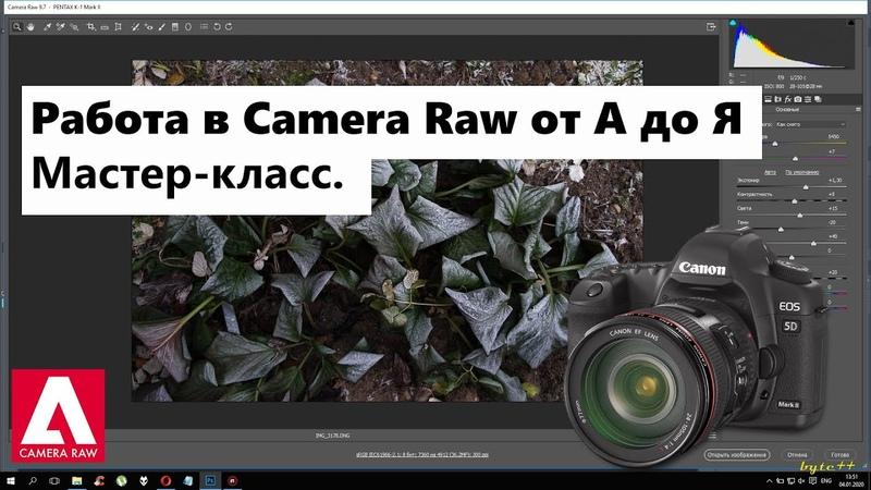 Camera Raw Учимся работать с RAW Базовые навыки Всё что нужно знать для работы