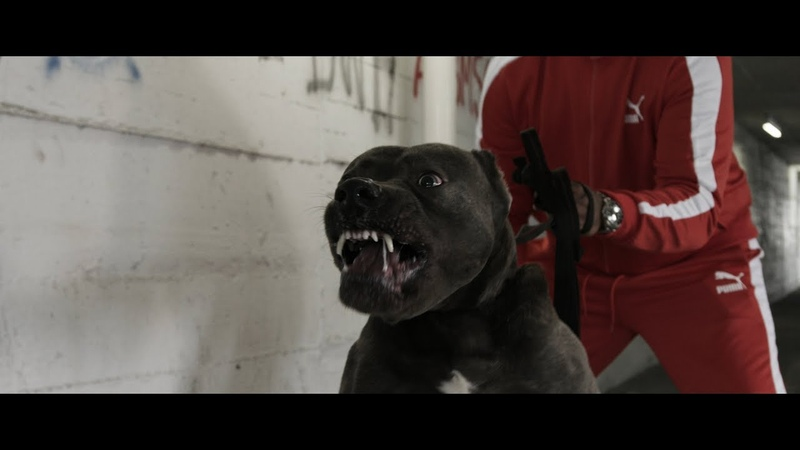 Kontra K feat Ak Ausserkontrolle Gzuz Setz dich Official Video