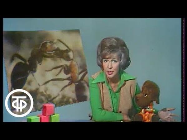 Спокойной ночи малыши Тетя Валя 1977