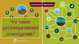 Что такое регенеративное земледелие?