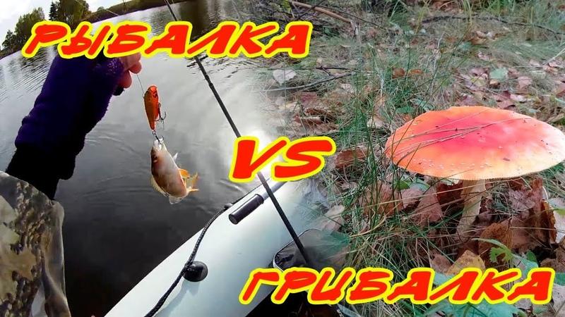 На пруд за щукой Почти пролётная рыбалка Дневник одного рыбака