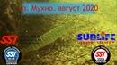 Дайвинг в Беларуси. оз. Мухно. август 2020