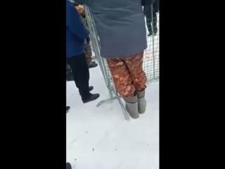 Россия, Воронеж, собачьи бои на улицах ()