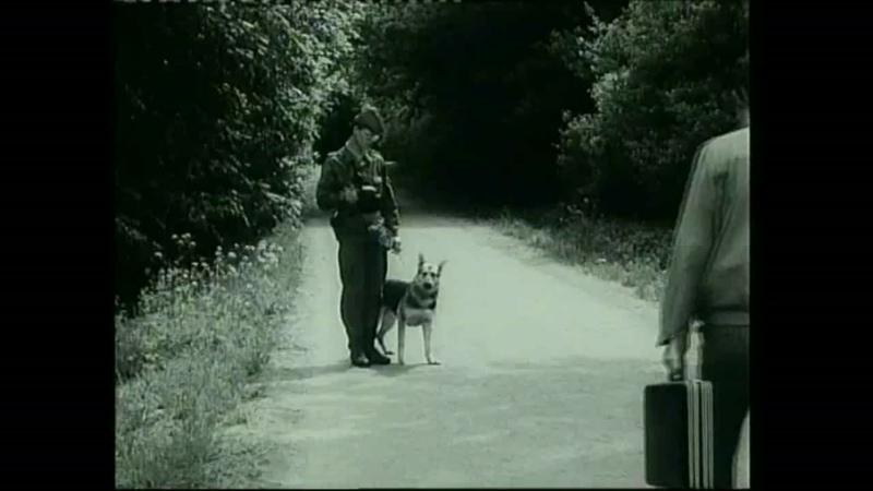 Пограничные собаки ГДР ч.2