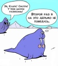 Ковалев Николай | Москва | 17