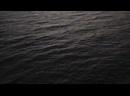 Видео от Олеси Рябчук